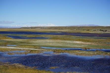 Ruta 40 - Patagonie, Argentine